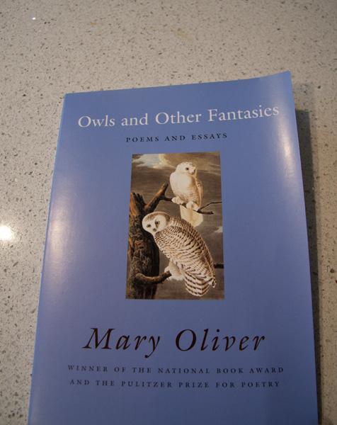 mary oliver essay